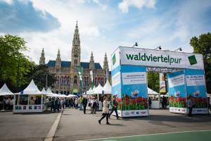 waldviertelpur2016_am_Rathausplatz_(c)_Waldviertel_Tourismus_Florian_Schulte